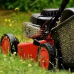How to mow the lawn correctly for the first time?